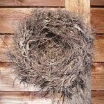 krans wortel nest 45 cm