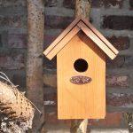 winterkoninkje nest met bitumendak