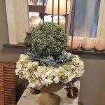 opendeur bankje met bloemen